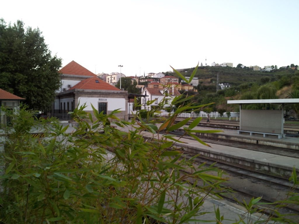 LamegoPortugal - Regua Station
