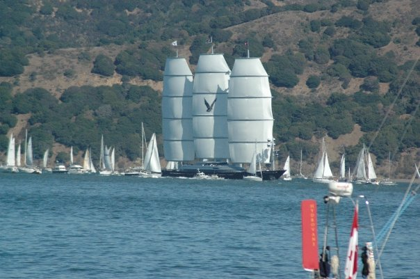 Sausalito, California USA - The Maltese Falcon