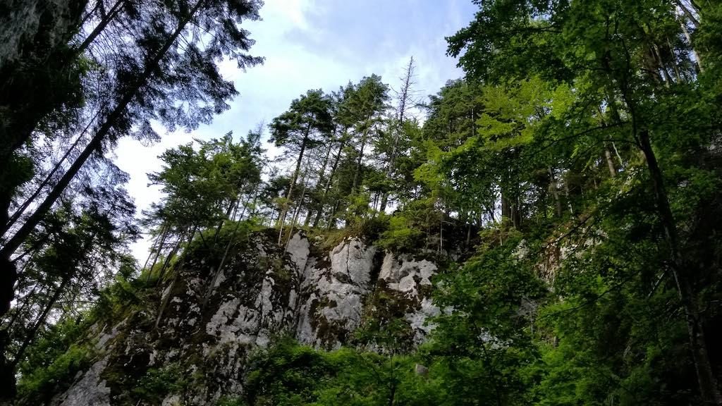 Canionul Șapte Scări (7 Ladders Canyon), Brasov - Canyon