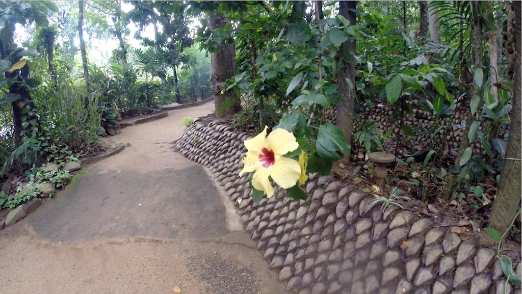 Ranweli Spice Garden, Kawudupelella, Matale, Sri Lanka