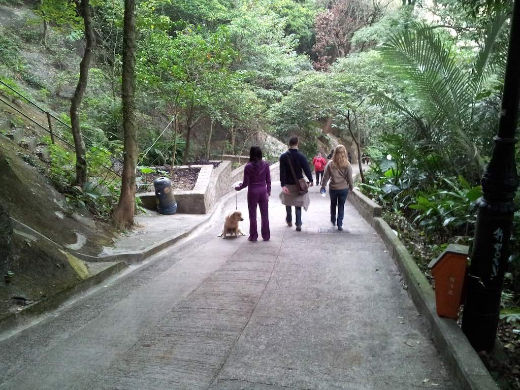 The Trail to the Peak, Hong Kong - Walking down the trail