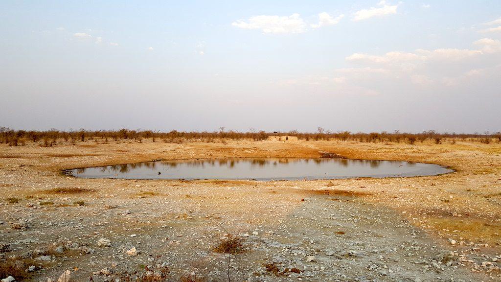 Etosha National Park, Namibia - Watering Hole