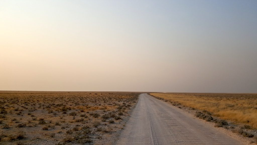 Etosha National Park, Namibia - Open road in the Park not a tree in sight