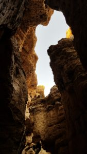 Sesreim Canyon, Sesreim, Namibia - Upward view of canyon